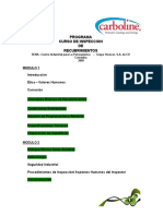 46897193-Programa-Curso-Inspeccion-Version-05.doc