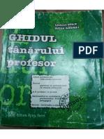 ghidul tanarului profesor