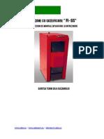 Carte Tehnica Centrale Gazeificare FI