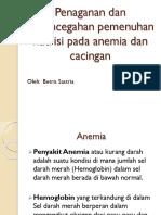 Gizi (Anamia)