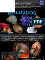Moluscos (L.molluscus, Blando)