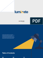 Luminate Brand Book