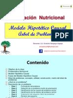 MODELO HIPOTETICO CAUSAL