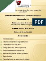 Diapositivas de Monografía