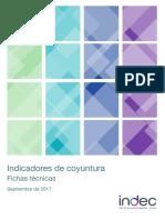Indicadores Coyuntura Fichas 07 17