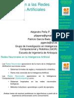 introduccionrn-101215075149-phpapp02