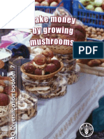 Make $ by Growing Mushroom