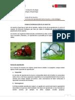 3. Formas de reproducción.docx