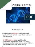 6.NUKLEINSKE-KISELINE
