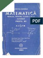 325123669 Manual Matematica Clasa 10 Ganga Algebra