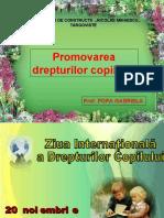 13984711-DREPTURILE-COPILULUI.pdf