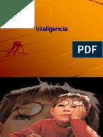 INTELIGENCIA 2014