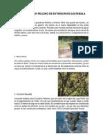 15 Animales en Peligro de Extinsion en Guatemala Viki