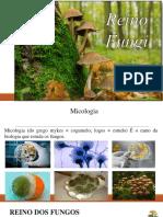 Aula de Biologia - Fungos