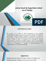 Programa Anual de Seguridad y Salud en El