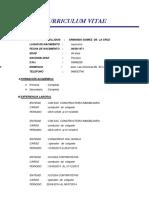 Curriculum Vitae Armando