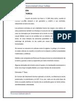 INDUSTRIA LACTEA.docx