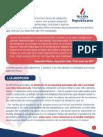 Documento Adopcio n Homoparental 2