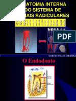 Anatomia Interna Dos Canais Radiculares