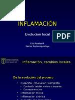 Inflamación-reparación