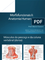 Sistema Muscular - músculos do pescoço e do dorso.pdf