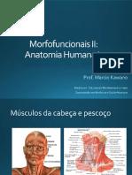 Sistema Muscular - cabeça e pescoço.pdf