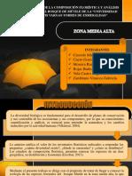 EXPOSICION DE SILVI.pptx