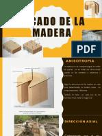 Secado de La Madera