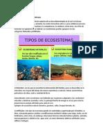Ecosistemas Naturales y Artificiales