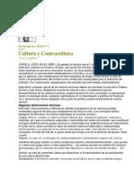 Cultura y Contracultura