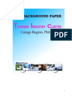 Background Paper - Caraga Tourism Industry Cluster.pdf