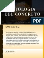 Patologia Del Concreto Exposicion