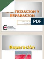 4 Cicatrización y Reparación