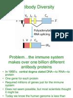 Antibody Diversity