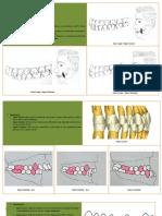 271115600-Ocluzia-Statică.pdf