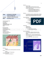 Skin Histology