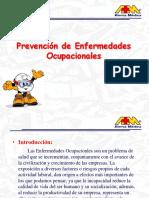 07 prevencion de enfermedades ocupacionales