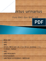 radiologi urogenital-CSS