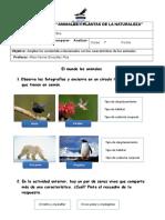 BIO1BUNI3N2_Ampliación_El Mundo de Los Animales (1)