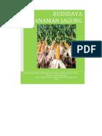 BUDIDAYA TANAMAN JAGUNG.pdf