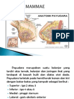 fibroadenoma-mammaeppt