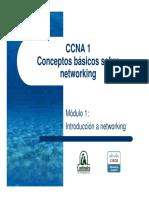 ccna1_mod1.pdf