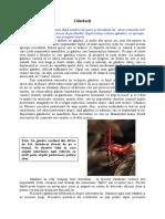 Animale si plante - 0105-0108 - Gandacii.pdf