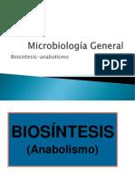 BIOSINTESIS Y ANABOLISMO