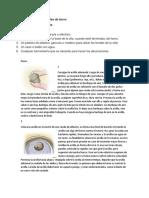 Elaboración de Las Ollas de Barro