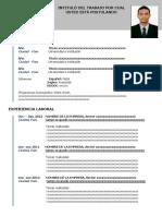 Curriculum Vitae Modelo4c Azul