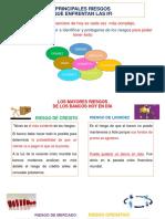 PRINCIPALES RIESGOS DE LAS IFI.pdf