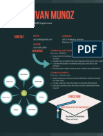 inforgraphic resume 3
