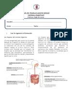 Guia Sistema Digestivo Quinto b