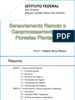 Aula 2 Introdução SR Florestas Plantadas